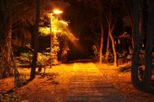 Footpath at night